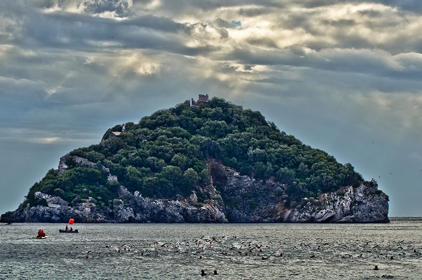 swim_island